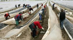Moderne slavenarbeid in EU-land Polen